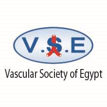 12th Annual Congress Of VSE 2016