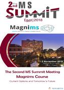 2nd MS Summit